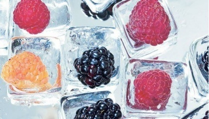 У найближчі 5-6 років українські заморожені ягоди і фрукти займуть таку ж частку на міжнародному ринку, яку Україна займає зараз у продажах зерна