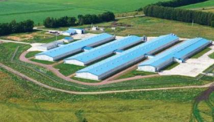 Компанія планує збільшити банк землі і придбати ще кілька цукрових заводів для того, щоб надалі розвиватися в Україні