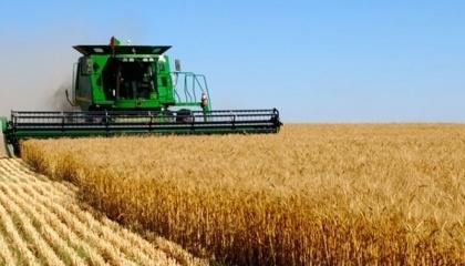 Окремі дослідні господарства системи НААН продемонстрували в минулому році урожайність зернових культур, що більш ніж у 1,5-2 рази перевищувала середні показники