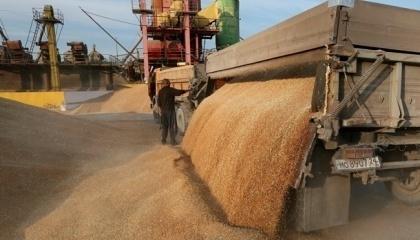 Вагові обмеження для вантажівок-зерновозів насправді не дадуть того ефекту, на якоий чекає Мініфраструктури