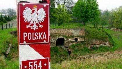 Польша построит вдоль границы Польши с Украиной и Беларусью защитных устройств от прохождению кабанов, зараженных вирусом АЧС