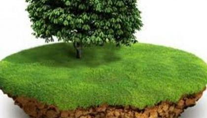 """Даний законопроект з'явився як відповідь на законопроект №4010а """"Про внесення змін до деяких законодавчих актів України щодо вдосконалення правового регулювання користування земельною ділянкою для сільськогосподарських потреб (емфітевзис)"""""""