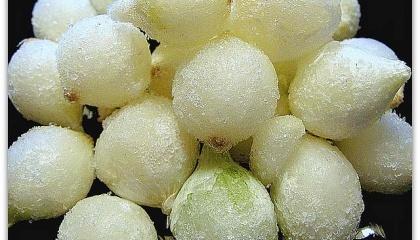 замороженный лук