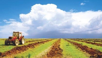 За месяц работу над моделью рынка земли завершат, и законопроект вынесут на рассмотрение правительства