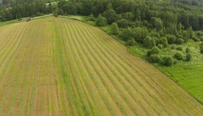 Сейчас обсуждается возможность предоставления права покупки сельскохозяйственной земли юридическим лицам