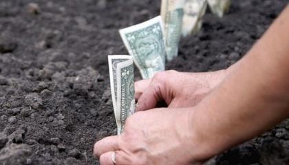 земля-деньги