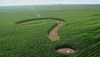 В Євросоюзі вимагають відкрити ринок землі, так як їм цікавіші в Україні не готові продукти з доданою вартістю, а сировина, на якій вони зможуть заробити: земля, ліс, органічна продукція