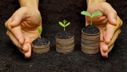 У швидкому відкритті ринку землі зацікавлений, перш за все, спекулятивний капітал і корумповані чиновники, які планують заробити на ціновій різниці при купівлі-продажу