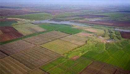 Право на покупку участков могут получить небольшие хозяйства, которые в течение последних 5 лет обрабатывали землю и работали в агросфере