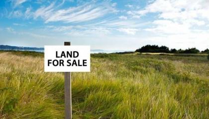 72% представителей украинского агробизнеса против внедрения рынка земли сельскохозяйственного назначения. Таков результат опроса, проведенного среди около тысячи участников отрасли во время конференция Agri Invest Forum 2017