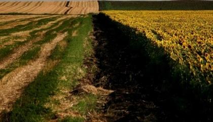 Главным вызовом, который стоит перед земельной реформой в Украине, является нехватка доверия населения