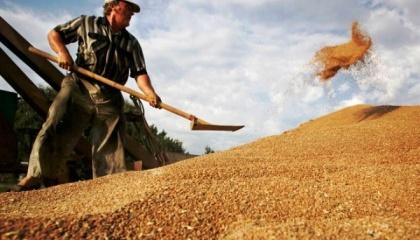 Ожидается, что спрос будет несколько отставать от предполагаемых объемов производства, что позволит поддерживать мировые запасы на уровне, близком к рекордному
