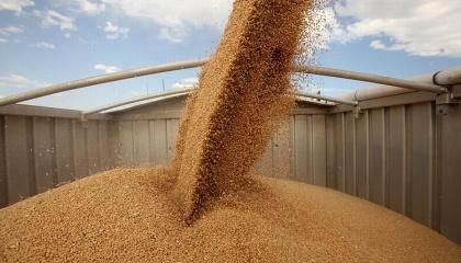 ПАТ «ДПЗКУ» налаштоване на розширення співпраці з сільгоспвиробниками в рамках своєї форвардної програми та, у разі наявності відповідної потреби з боку фермерів, мають можливість збільшити обсяги фінансування цієї програми з 1,1 млрд до 2 млрд грн
