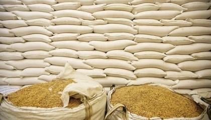 Прогнозируемый сбор зерна - 64 млн т, из них 42 млн т будет экспортировано