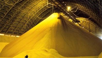 Однією з основних проблем логістики зерна в Україні є неефективне використання інфраструктури зберігання і перевалки зерна.