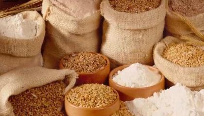 10 господарств, які увійшли в ТОП, вирощують найбільше зернових культур порівняно з іншими аграрними господарствами