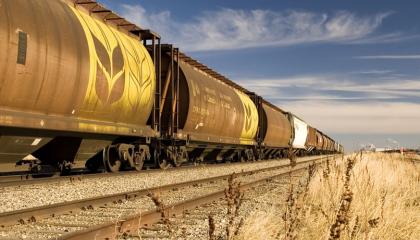 Вагони для залізничних перевезень своїх вантажів аграрії готові будувати самостійно, але за умови надання 30% знижки на тариф