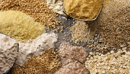 Основними споживачами українського насіння стали Азербайджан, Білорусь, Молдова, Грузія, а також країни ЄС - Австрія, Литва і Румунія