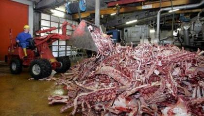 Обсяги закупівель сировини - це сотні мільйонів голів. В Україні, щоб забезпечити Лисичанський желатиновий завод сировиною, просто немає