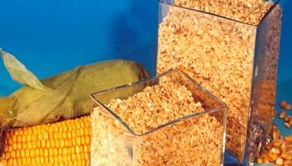 Основные покупатели – комбикормовые предприятия – начали заменять его в рационе животных на более высокопротеиновые продукты