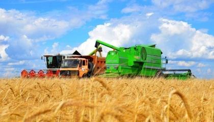 В южных регионах Украины началась жатва