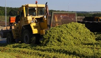 Для видобутку біогазу застосовуватимуть буряковий жом, що виробляють на місцевому цукровому заводі. А також сировиною слугуватимуть відходи місцевого свинокомплексу