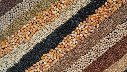 В общем доходность растениеводства год назад составляла более 50%