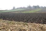 Про індексацію ставок земельного податку та грошової оцінки землі у 2009 році фото, ілюстрація