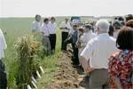 Органічність органічного виробництва  для України фото, ілюстрація