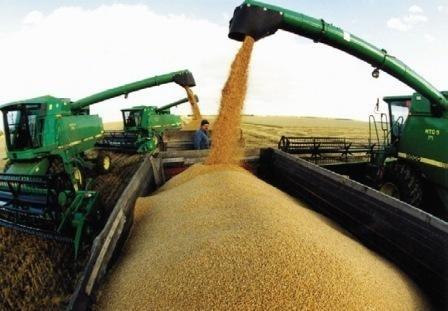 Программируйте высокую урожайность заблаговременно фото, иллюстрация