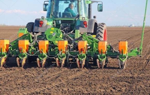 Способ оценки точности посева зерновых сельскохозяйственных культур  фото, иллюстрация