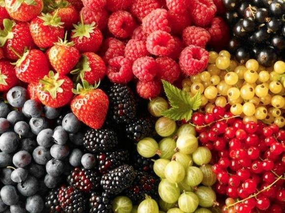 Коррекция ягодных трендов фото, иллюстрация