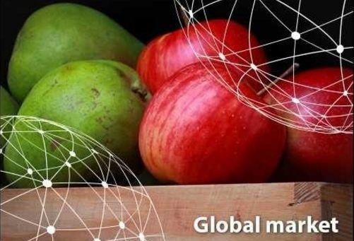 Огляд європейського ринку фруктів фото, ілюстрація