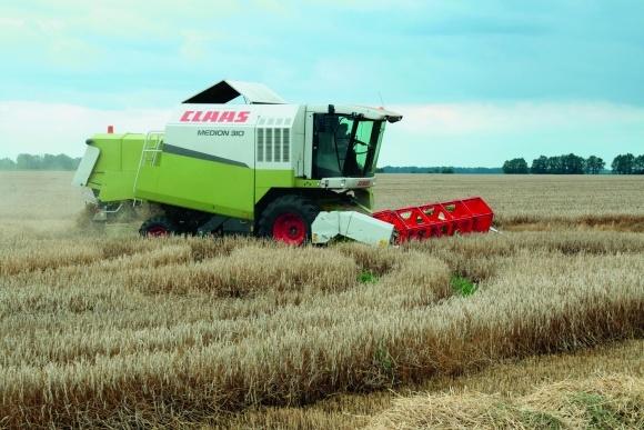 Десикація посівів пшениці та інших зернових колосових культур фото, ілюстрація