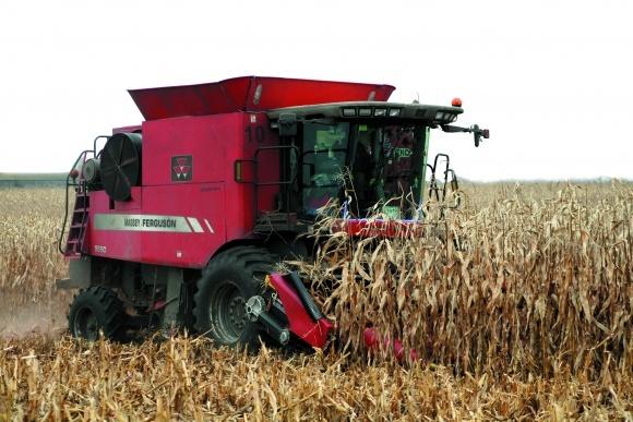Технологии и техника уборки и хранения зерна кукурузы фото, иллюстрация