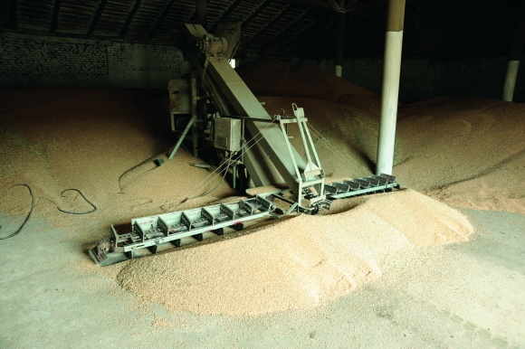Зернометач — машина проста, надійна, ефективна фото, ілюстрація