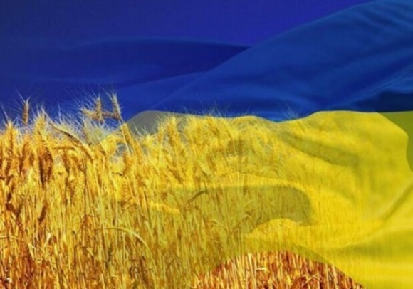 Як змінилися основні показники сільського господарства за 30 років незалежності фото, ілюстрація