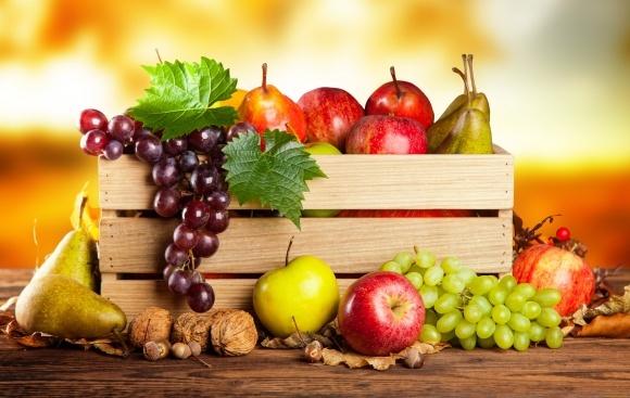 Вызовы сезона-2018: защита плодово-ягодных культур фото, иллюстрация