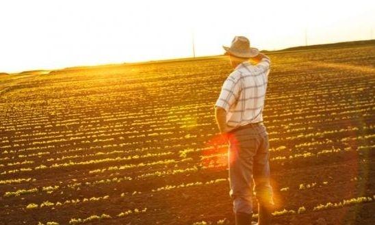 Як агрогаджети допомагають польським фермерам? фото, ілюстрація