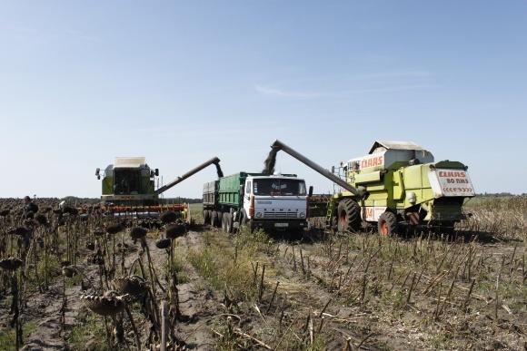 Обзор рынка зерновозов в Украине  фото, иллюстрация
