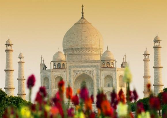 Індія – країна слонів і великих експортних можливостей фото, ілюстрація