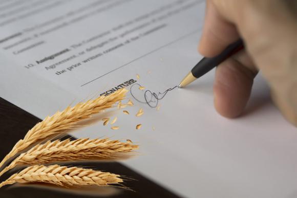 Аграрные расписки: отныне по всей Украине фото, иллюстрация