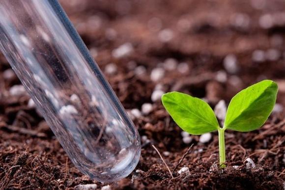 Где сделать агрохимический анализ почвы в Украине фото, иллюстрация