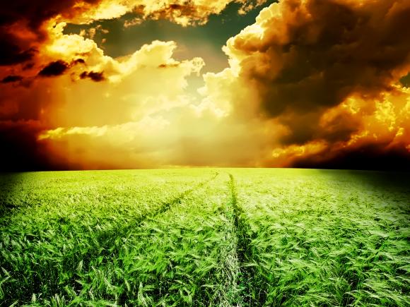 Орієнтація - північ. Аграрний бізнес іде з Південної України фото, ілюстрація