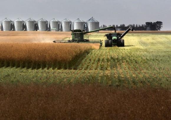 Подготовка почвы под выращивание рапса: опыт Канады - мирового лидера фото, иллюстрация