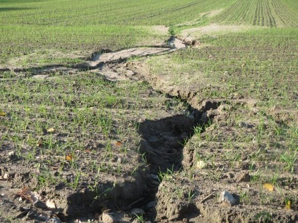 Як зупинити ерозію грунтів? фото, ілюстрація
