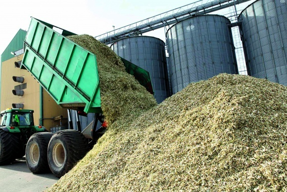 Биоэнергетика в Украине: эффективная конвертация биомассы фото, иллюстрация