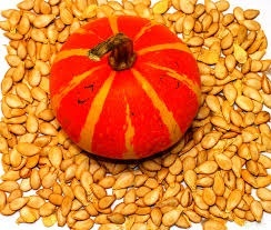 Прибыльные тыквенные семечки: выращивание тыквы на семена фото, иллюстрация