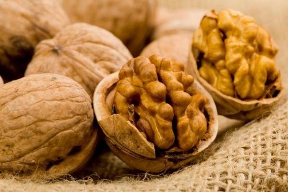 Як побудувати бізнес на горіхах? фото, ілюстрація