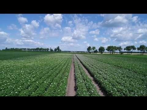 Российские агрохолдинги сегодня и завтра фото, иллюстрация